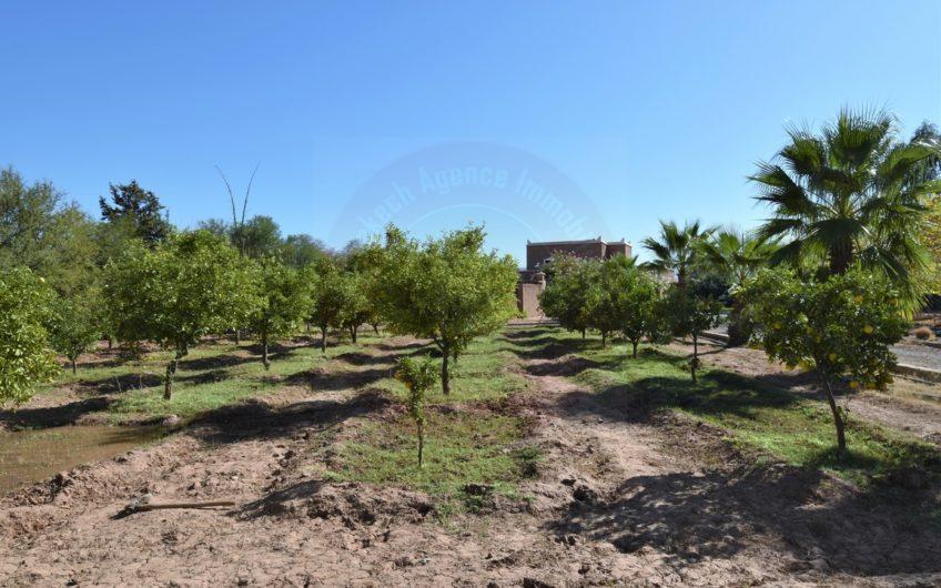 Marrakech villa ferme à vendre